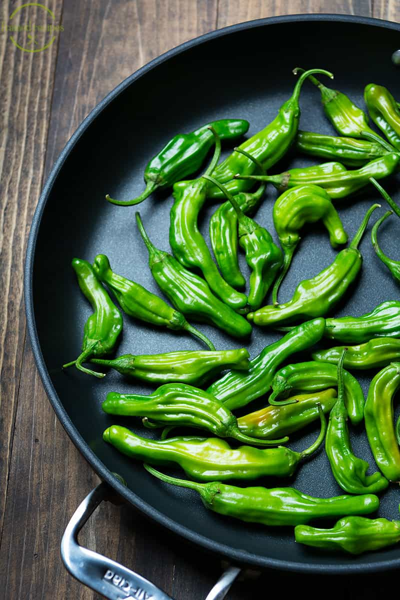 fresh shishito peppers in a large skillet