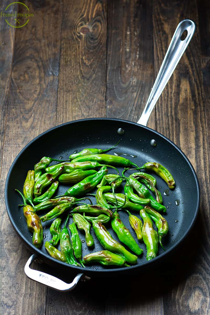 blistered shishito peppers in the skillet