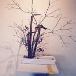 Ruth's arrangement