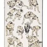 hokusai-sumo