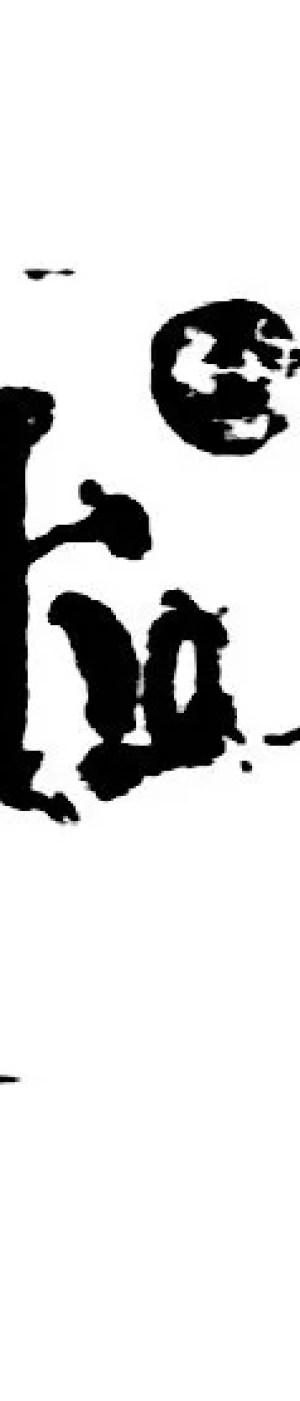 Autografo Lucini