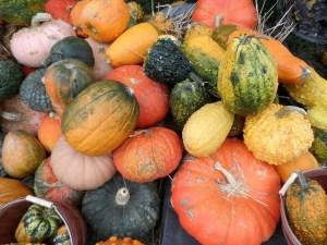 pumpkin-72336_1280