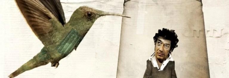«Il Colibrì» di Sandro Veronesi, un romanzo sul senso della vita
