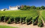 Passeio a Região da Borgonha, Beaune