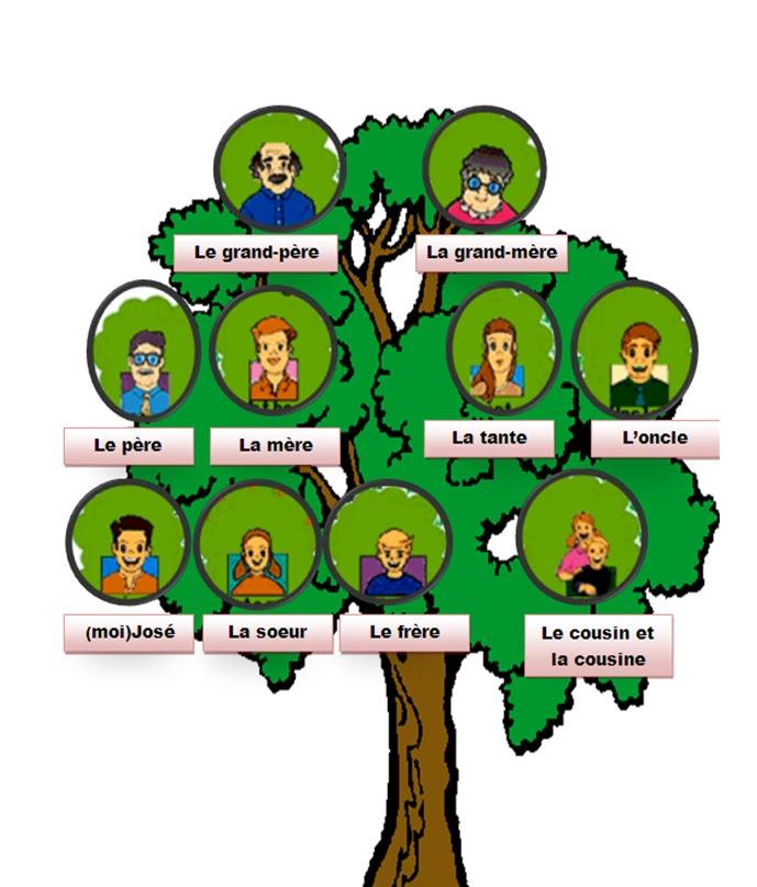 شجرة العائلة بالفرنسية