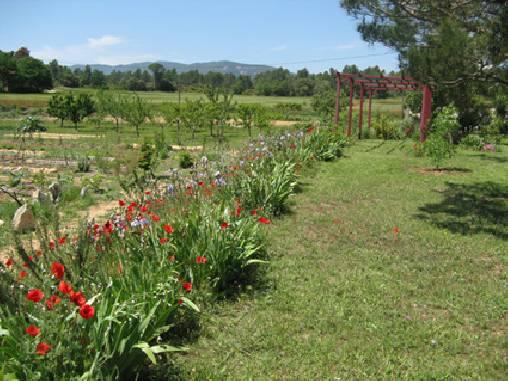 Chambre Dhtes Dans Le Luberon En Provence Avec Jardin