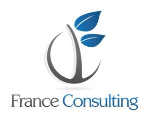 Logo France Consulting