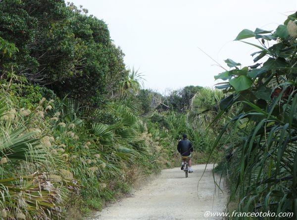 久高島 自転車