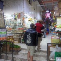 Mercado de San Juan メキシコシティの市場で現地食開拓