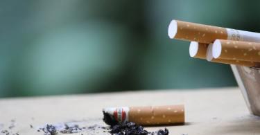Les fumeurs interdits de cigarette dans certains parcs parisiens