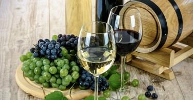 Le vin - vocabulaire