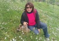 Calabria   Scuola, la denuncia di un'insegnante: 'Sfrattata perché tutti i posti assegnati ai fruitori della 104'
