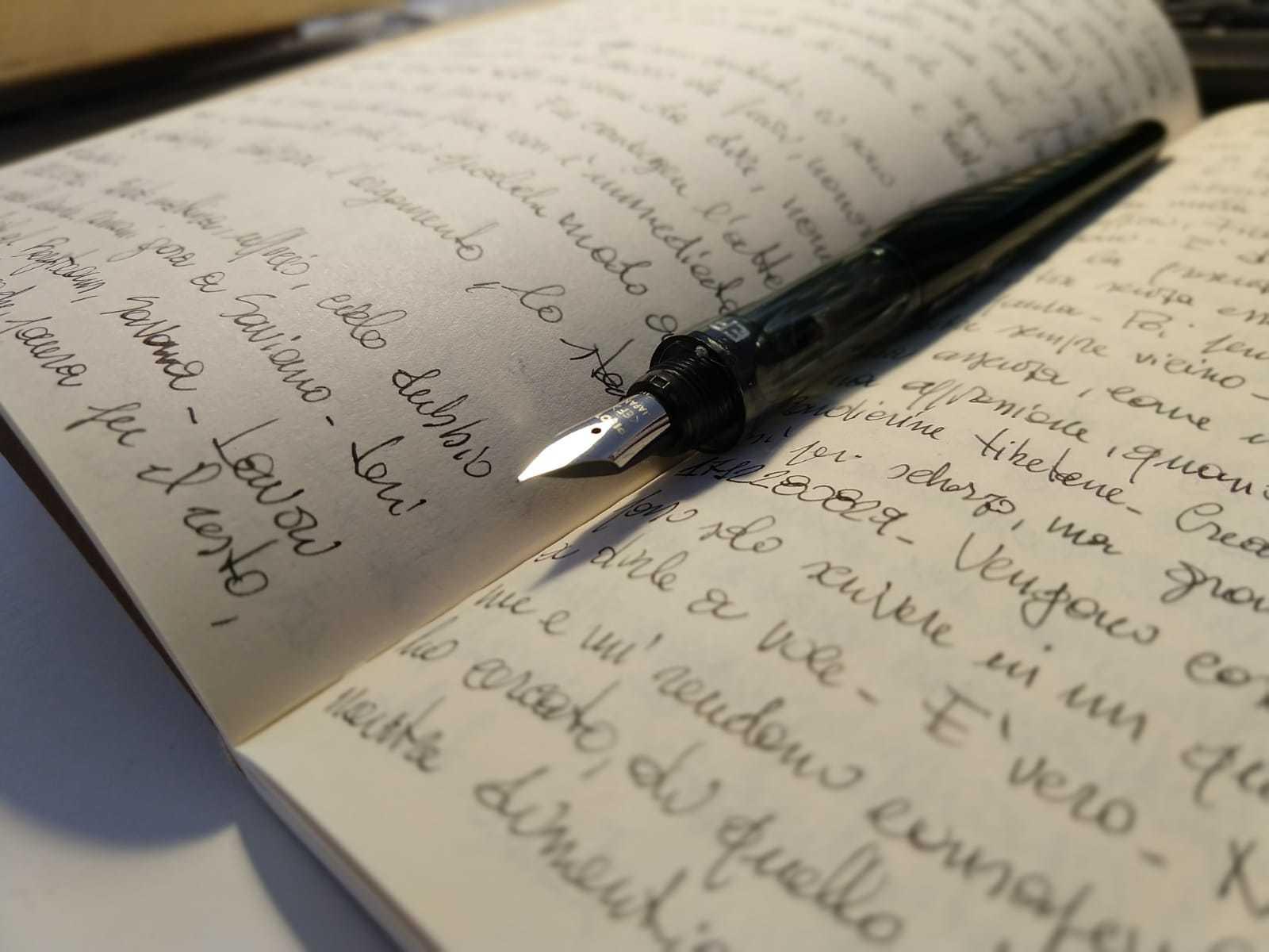 Scrivere tutti i giorni - Francesco Dattolo