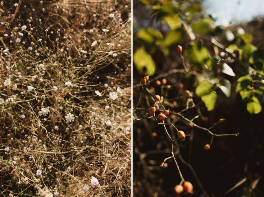 Wedding proposal inspiration proposing in Tuscan Countryside