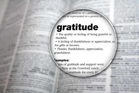 gratitude - dictionary definition under a magnifyin glass