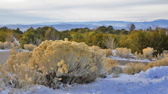C'est sur les hauteurs de Santa Fe (Nouveau-Mexique, Etats-Unis)que Forrest Fenn pourrait s'enterrer avec son trésor.