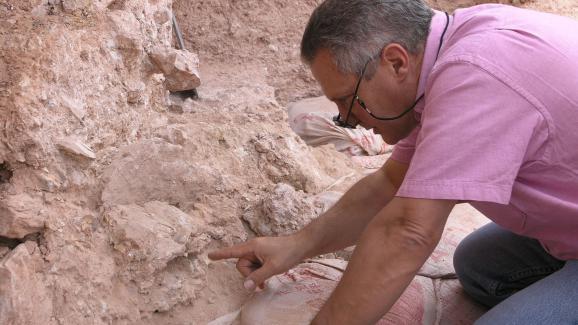 Le paléoanthropologueJean-Jacques Hublinsur le site de Jebel Irhoud, au Maroc. Il montre le crâne humain découvert lors des fouilles.