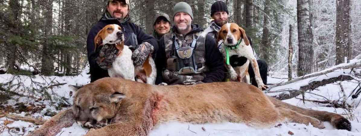 Steve Ecklund (au centre), avec la dépouille d\'un puma, début décembre 2017, en Alberta (Canada).