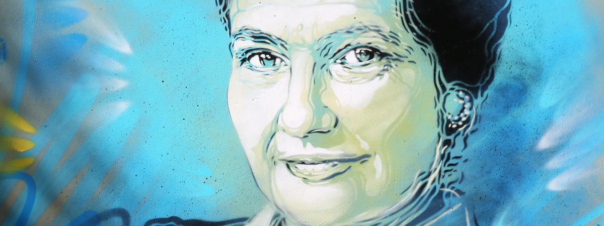 Le portrait de Simone Veil peint par Christian Guémy et dévoilé à Mouans-Sartoux (Alpes-Maritimes) le 5 octobre 2018.