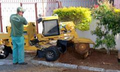 A máquina precisa apenas de um operador e funciona como uma serra, que tritura os restos de troncos sem danificar a calçada e muros
