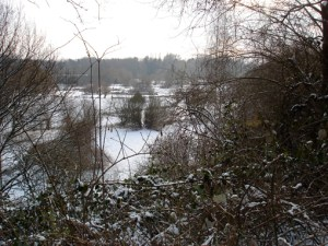 insel-hombroich1