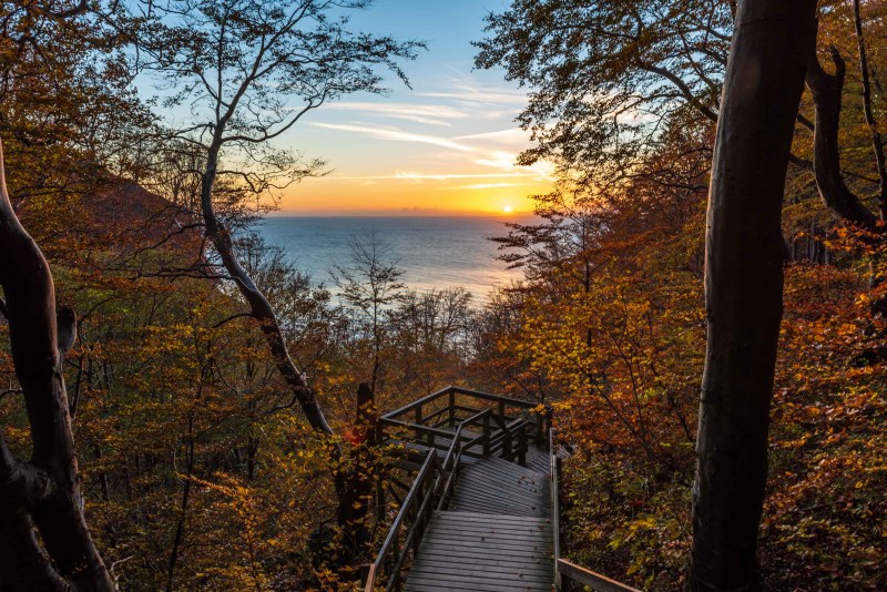 Stairs with view