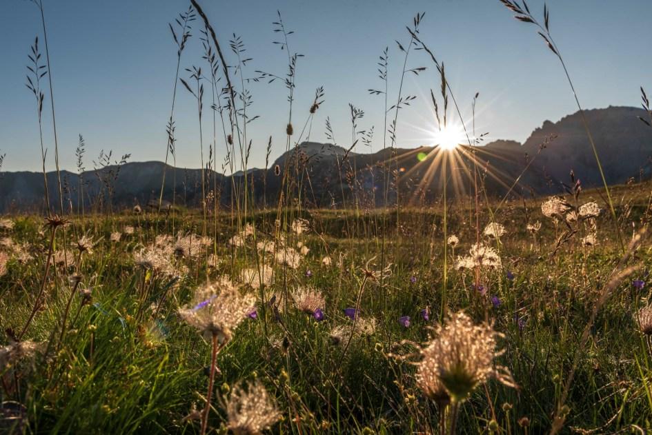 Lever du soleil dans le Queyras dans les Alpes du sud