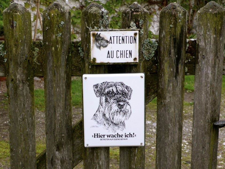 "And last but not least, a dog posting. The lower sign translates to, ""I watch over this house.""  I love that it is a sketch of the actual dog who lives here."