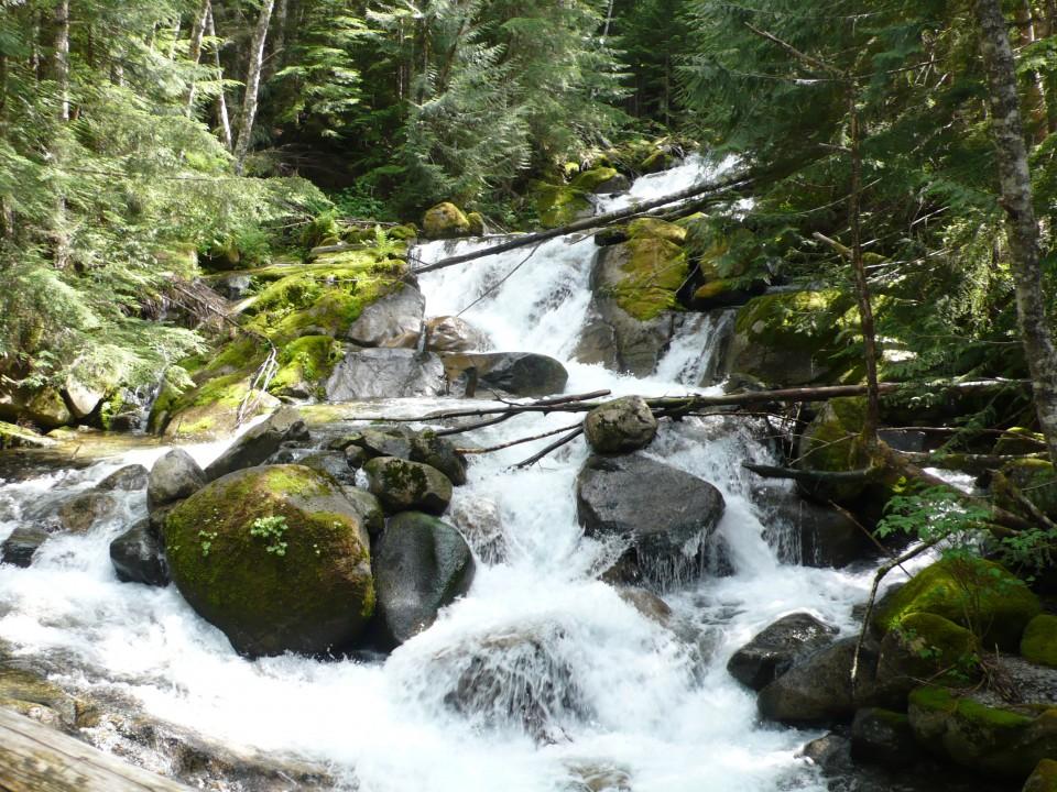 Humpback Creek waterfalls