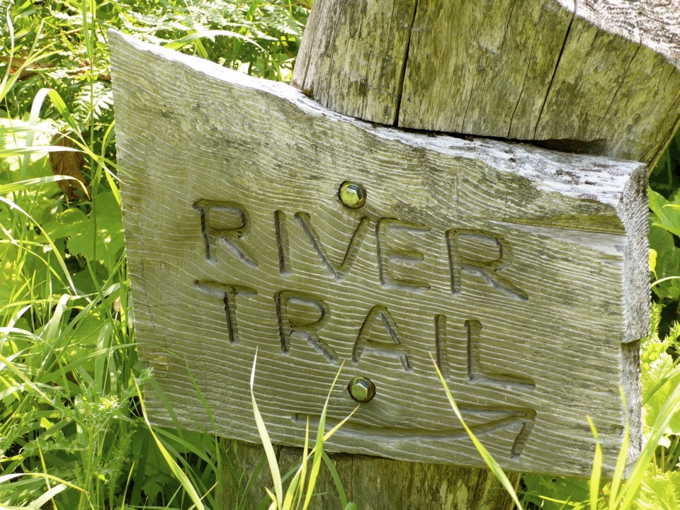 "I know it says ""River Trail"" but it could have said ""Mosquito Trail"" and would have been more descriptive.  We have never encountered mosquitoes like this on the River Trail!  Deet Jungle Juice Off Repellent needed to be reapplied again and again, but worked and kept us going.  Met some firefighters at the trail head, one who tried to warn us about the mosquitoes (we thought he was being wimpy and exaggerating the whole thing because we have done this hike before and it is buggy but worthwhile, but, in fact, the firefighter was right!)  We later met a baby-faced forest ranger on the River Trail.  He had countless welts on his arms, so I sprayed him down with OFF and he was very thankful!"