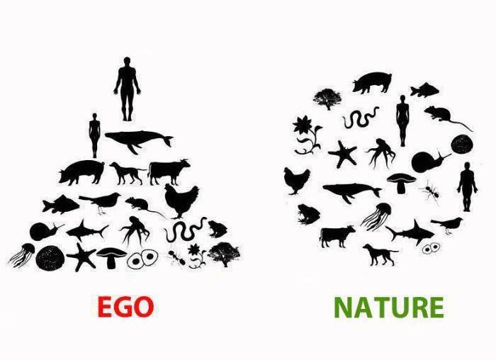 Ego vs. Nature