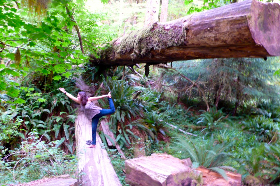 Dancer dwarfed by ancient forest, Hoh National Forest
