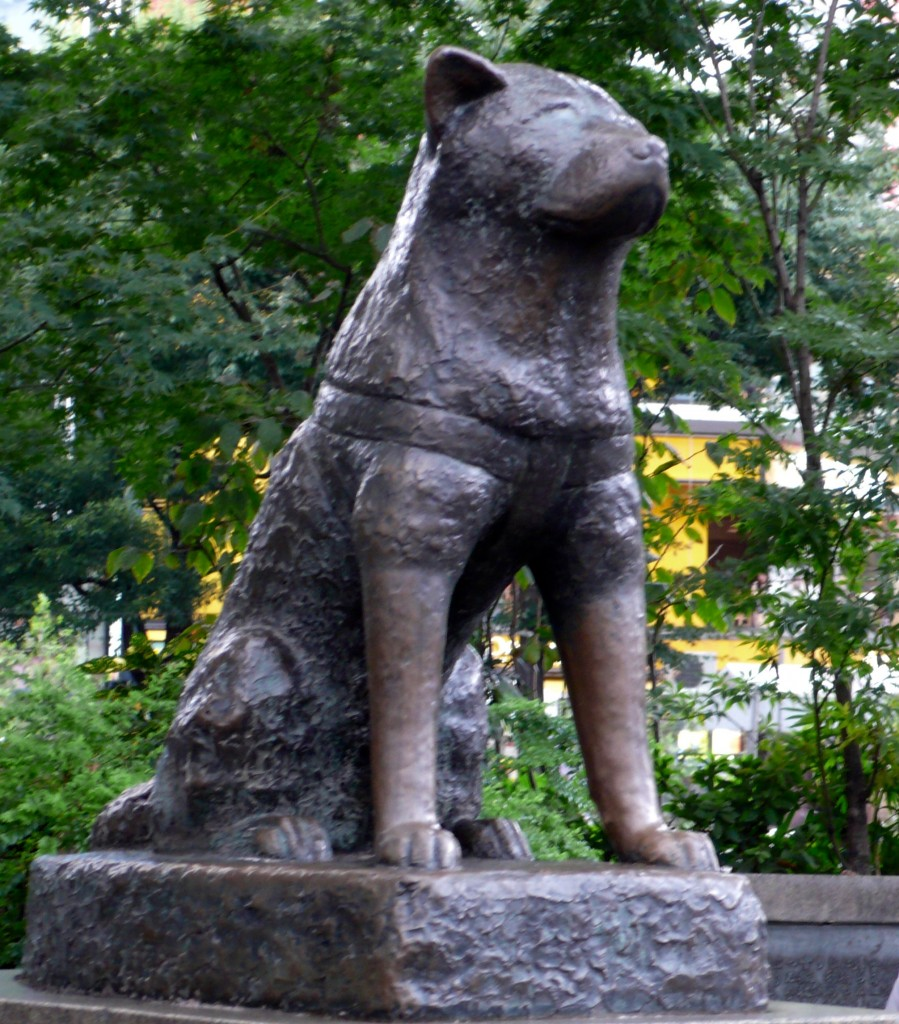 Statue of Hachiko at Shibuya Station.  If you have not yet seen the movie, it is a must see. People mob the statue of Hachiko and pet him and sometimes they cry!