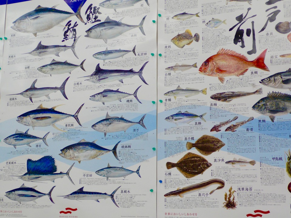 This huge board came in handy so Kazuko could identify the names of the fish in the market!