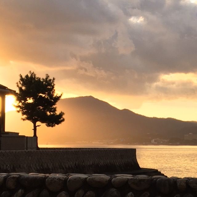 And yet another from Miyajima.  I guess you'd think this was my favorite spot.  There were many favorite days, places, and activities.  It's just that Miyajima possessed a certain varying enticing light at all times of the day, making it a very photogenic place.