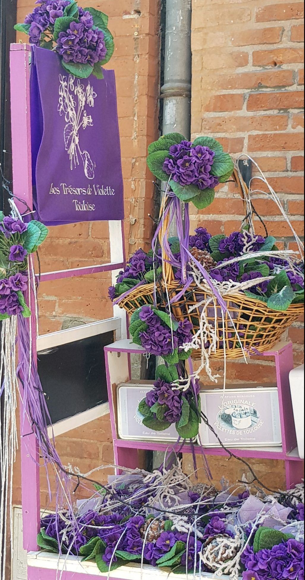 Violet is one of the symbols of Toulouse