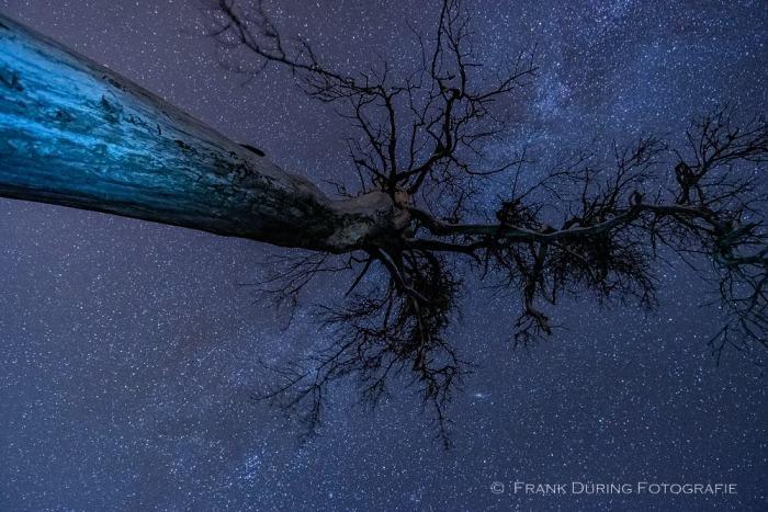 Sternbahnen, Hohes Venn, Nachtaufnahme, Milchstraße