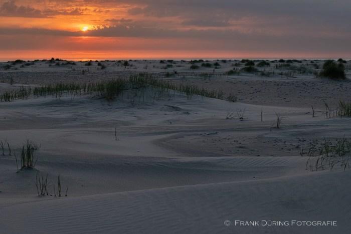 Sonnenuntergang, Ballumer Dünen, Ameland, NL