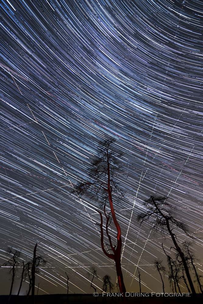 Sternbahnen, Hohes Venn, Nachtaufnahme
