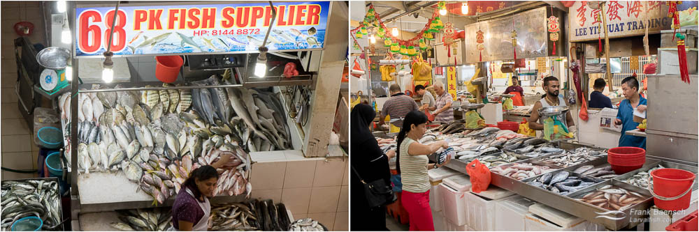 Tekka Market seafood. L: Mackeral, barracuda, jack, flatfish (indian halibut), snapper, mullet, threadfin, jacks, pompano, bream, scad, halfbeak, whiting, silver biddy , snakehead, juvenile shark. R: Scad, rabbitfish, mackeral, sardine, barramundi, mullet, jack, snapper, grouper, bream.