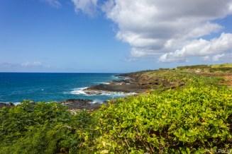 Kauai-043