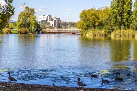 Dag.11-Canberra-3
