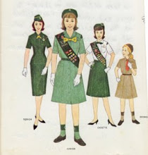 Picture of Girl Scouts2