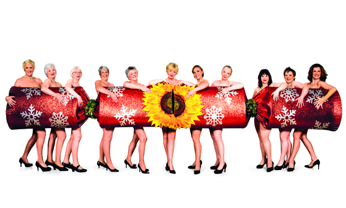The Original Calendar Girls and the cast of The Girls. Image Credit: Matt Crockett