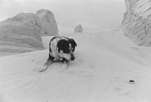 Chuck Forsman, Near Tooele, Utah, 2000