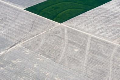 Evan Anderman, Fallow Fields, 2014