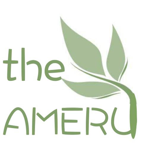 The Ameru Blog