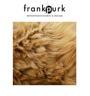 Quadrat_purk_bear