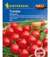 Cherry-Tomaten ´Primavera´,1 Portion