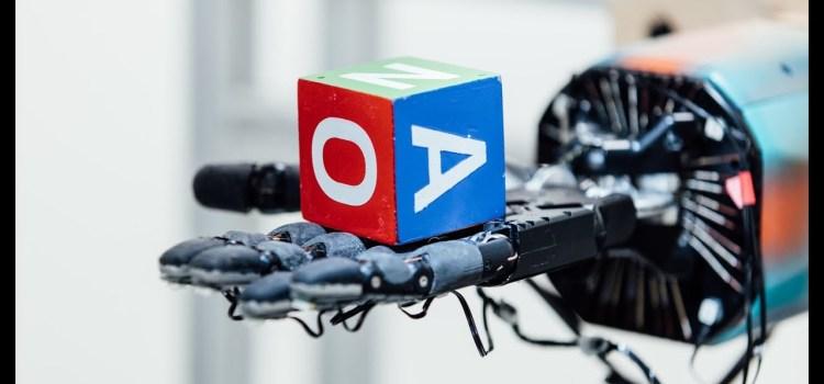 How an AI Learns Dexterity